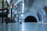 Fotka zápasiacich myší v metre získala cenu v prestížnej súťaži