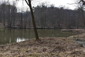 V zvernici sú dva rybníky.