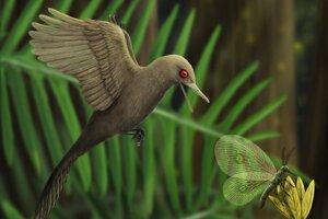 Umelecká predstava o novoobjavenom najmenšom dinosaurovi.