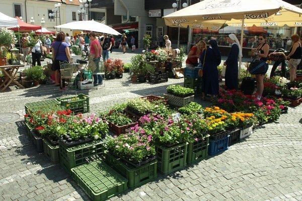 Na obľúbený kvetinový trh sa môžu Trnavčania tešiť už tento týždeň.