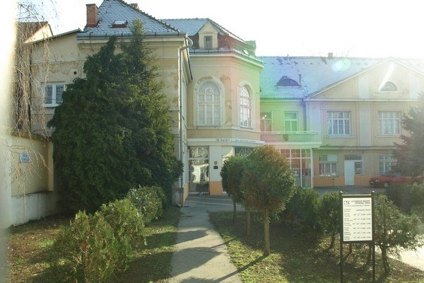Sochárove meno nesie od roku 1978 trnavská galéria.