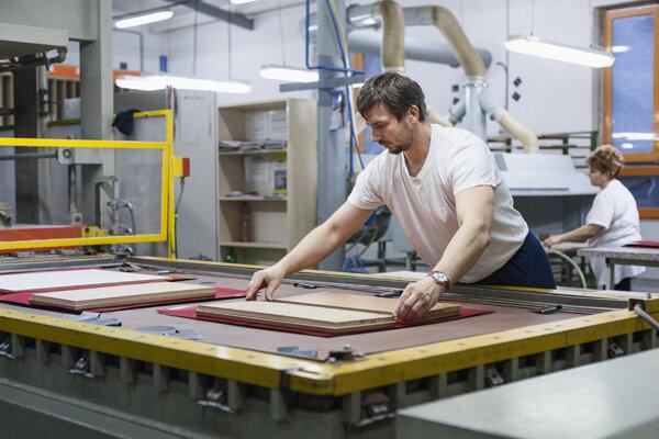 Prepúšťanie sa vDecodome týka najmä stolárov vo výrobe. Podľa slov riaditeľky ÚPSVaR vTopoľčanoch, pôjde oviac než polovicu zo všetkých ohrozených zamestnancov. Nasleduje profesia pracovník obchodu, skladník, údržbár anakoniec pozície vrámci administratívy.