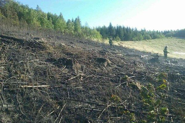 Požiar hasili profesionálni i dobrovoľní hasiči.