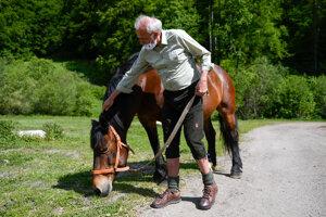 Minister Ján Mičovský počas prehliadky koní chráneného národného plemena norika muránskeho v Stredisku chovu koní štátneho podniku Lesy SR v Dobšinej, ktoré ako jediné na svete zabezpečuje chov tohto plemena. Dobšiná, 22. máj 2020.