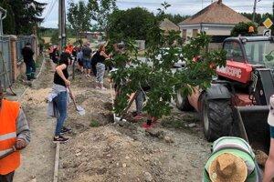 Pri vysadení 150 stromov sa vo Dvoroch podieľala aj verejnosť.