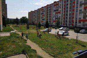Mesto, poslanci, dobrovoľníci i aktivační pracovníci priložili ruku k dielu a kosili na sídlisku Západ.