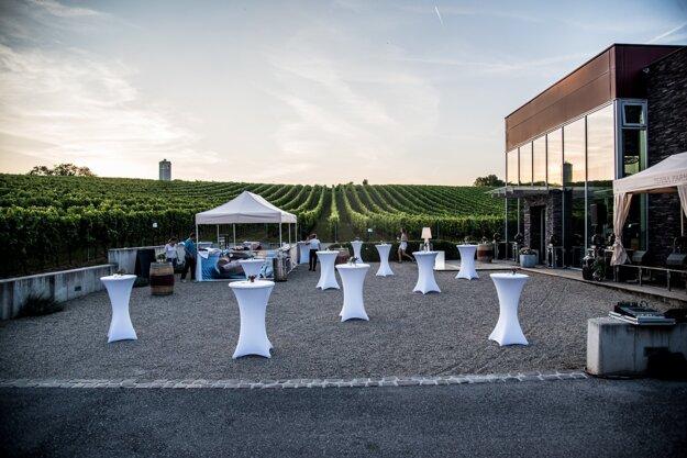 Jazz vo vinohrade vo vinárstve Terra Parna, Suchá nad Parnou