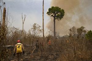Hustý opar čierneho dymu sa vtedy dostal až do tisíce kilometrov vzdialeného mesta Sao Paulo.