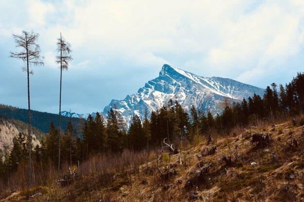 Pohľad na Kriváň z Tichej doliny