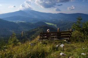 Pohľad z vrcholu Borovniaka na Kráľovu hoľu.