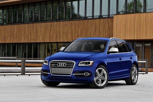 Audi SQ5 s benzínovým motorom 3.0 TFSI bolo špeciálne vyrobené pre USA, Kanadu, Čínu, Rusko, Singapur, Južnú Kóreu a Južnú Afriku, Mexiko, Brazíliu, Argentínu, Chile a Ukrajinu. V Európe s benzínovým motorom v tomto aute nepočítajú.