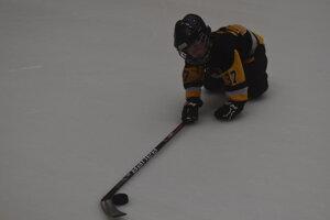 Prešovský hokej bol na kolenách.