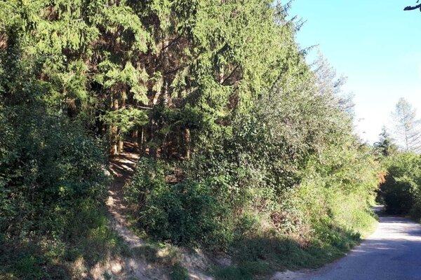 Cesta na Kalvárií