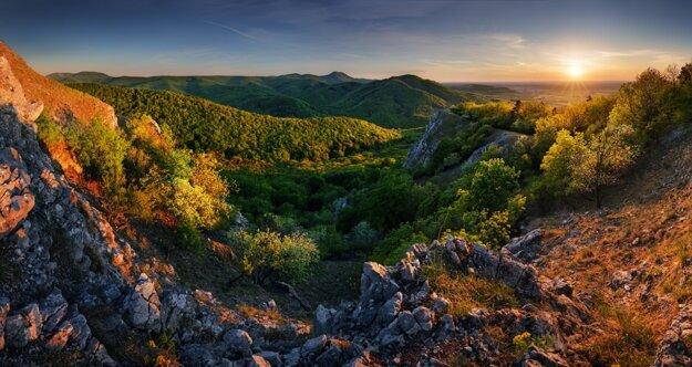 Lesy Malých Karpát z Vápennej