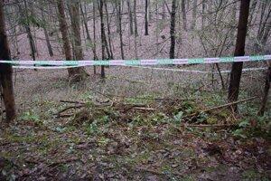 Miesto činu v lesoch nad Očovou.