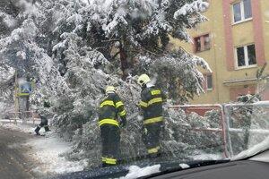 Vo viacerých mestách polámal mokrý sneh stromy.