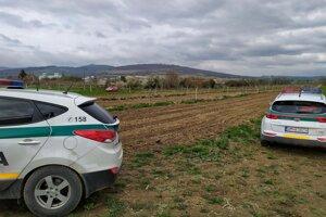 Policajti riešia krádež ovocných stromčekov