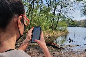 Linda Kisková Bohušová zadáva výsledky svojho pozorovania do mobilnej aplikácie.