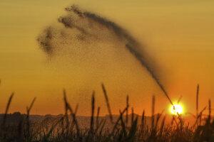 Slnko vychádza nad poľom so zavlažovacím zariadením pri meste Lebus na východe Nemecka.