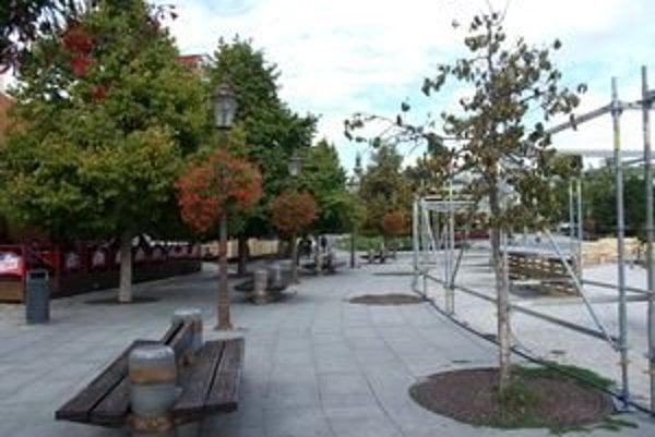Až šesť kruhov, v ktorých rástli stromy, je úplne prázdnych. Ďalšie tri stromy vyhynú už onedlho.