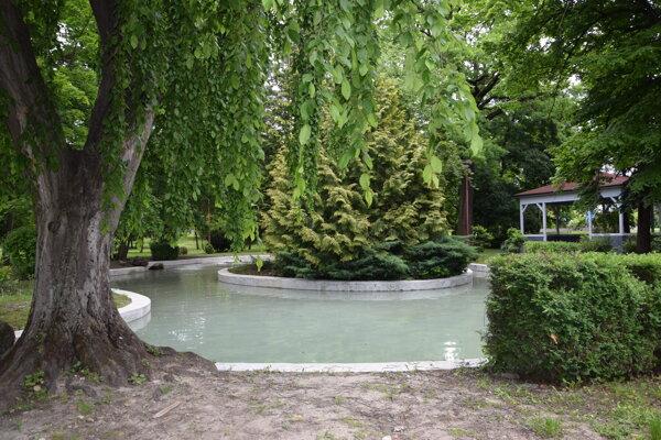Napustené jazierko v mestskom parku.