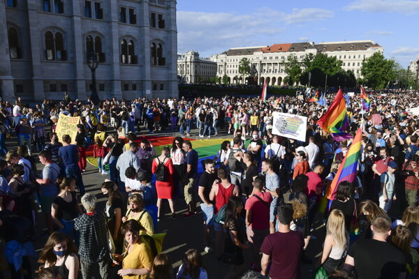 Protest proti novému zákonu obmedzujúcemu propagáciu LGBT komunity na školách.