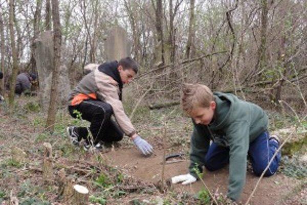 Zabudnuté židovské hroby pomáhajú odhaľovať aj žiaci základných škôl - v čase, keď nemajú vyučovanie.