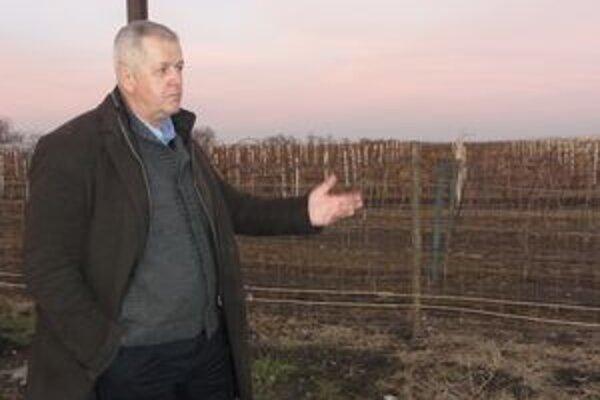 Podnikateľ Eduard Šebo vlastní takmer 300 hektárov viníc.