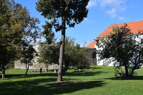 Park susedí s Levickým hradom.