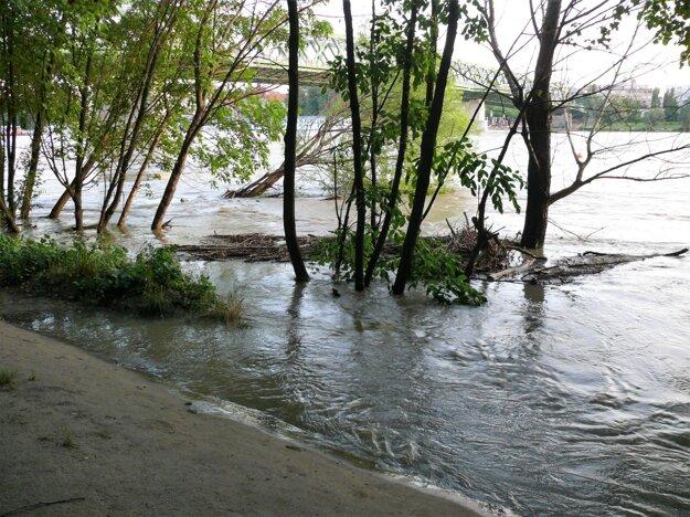 Voda zaplavila les na mieste bývalého kúpaliska Lido v Petržalke v Bratislave.