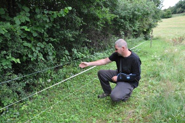 Peter Hucko ukazuje miesto, odkiaľ na neho vybehla medvedica.