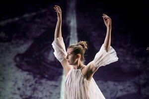aj túto fotografiu možni nájsť v uliciach Vratislavy na výstave Okamihy tanca