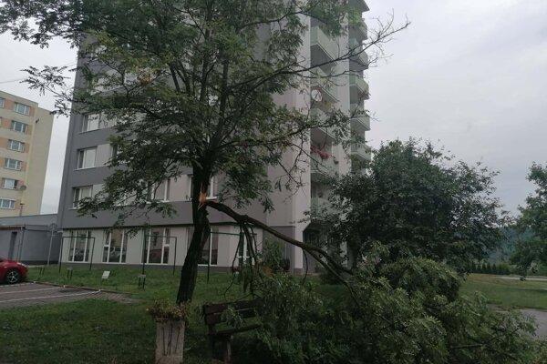 Zlomený strom v Žiari nad Hronom.