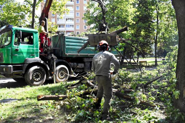 Škola si musela na odstránenie polámaných stromov z jej pozemku pred budovou počkať niekoľko dní.