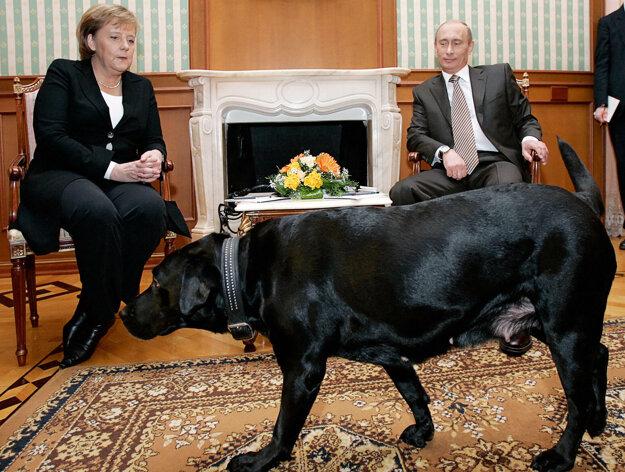 V roku 2006 počas stretnutia s Putinom, stretla Merkelová aj jeho psa Konni. Merkelová, na ktorú predtým jeden zaútočil, má strach zo psov.