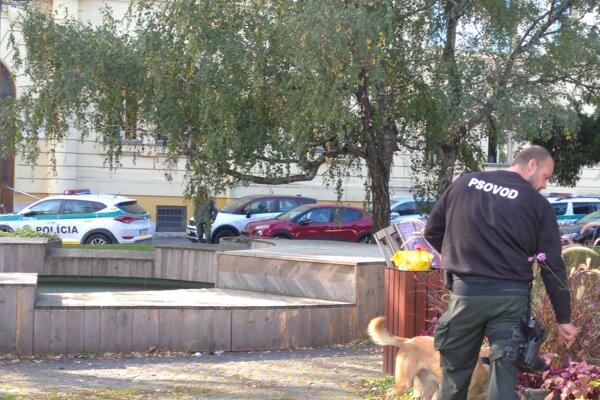 Pes prehľadával aj okolie súdu.
