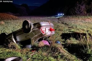 Vodič utrpel ľahké zranenia.