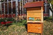Slovinský úľ.