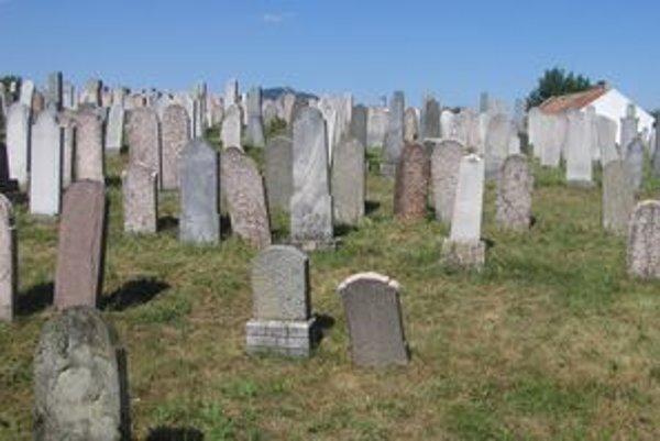 Židovská náboženská obec plánuje obnoviť židovský cintorín na Klokočine.