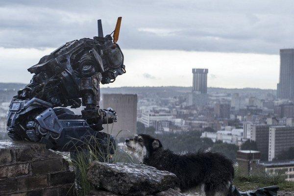 Robot Chappie začína rozumieť samote.