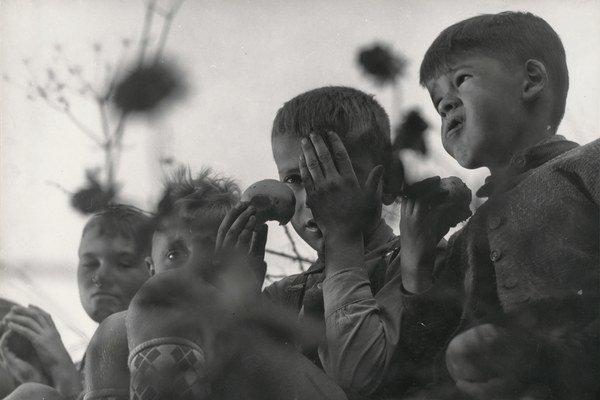 Juraj Šajmovič: Vojnová generácia, 1952, SNG.