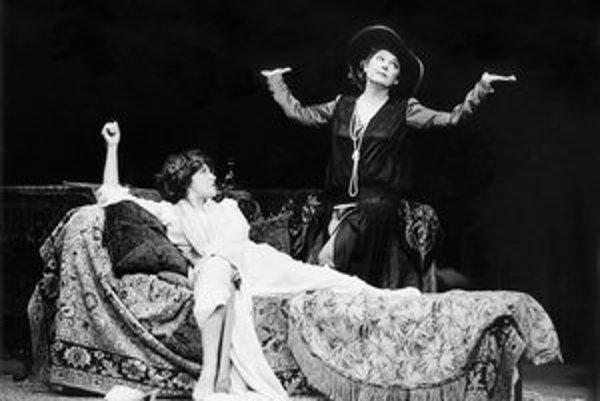 V hre Martina Shermana Keď tancovala v réžii Ľubomíra Vajdičku si zahrali spolu 67-krát od marca 1996. Emília Vášáryová hrala Isadoru Duncanovú a Božidara Turzonovová Mary Destiovú.