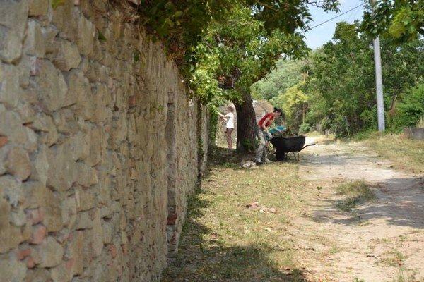 Vlani pomáhal Modranský okrášľovací spolok s čistením múrov opevnenia.