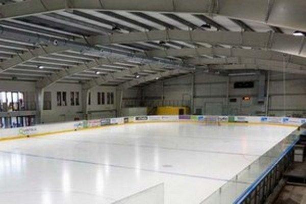 V regióne sa nachádza jediná hokejová hala v Hamuliakove.