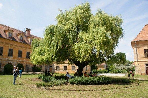 Kaštieľ aj s parkom v obci Veľký Biel.