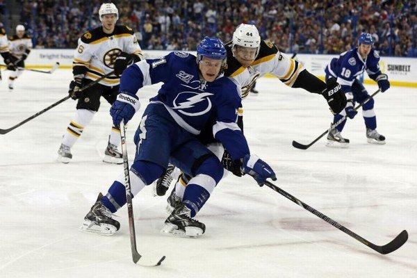 Hokejista Tampy Bay Lightning Slovák Richard Pánik a hráč Bostonu Bruins Dennis Seidenberg bojujú o puk v zápase Tampa Bay Lightning - Boston Bruins.