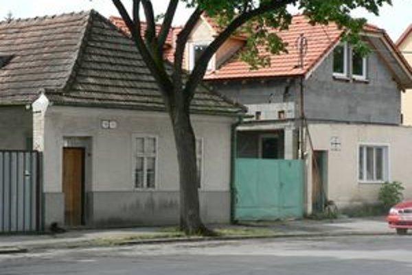 Na tomto strome sa obesil mladý muž z Piešťan.
