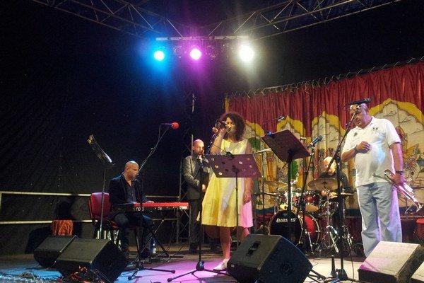 Iva Bittová na festivale Romale v Hamrech u Poličky v Pardubickom kraji.