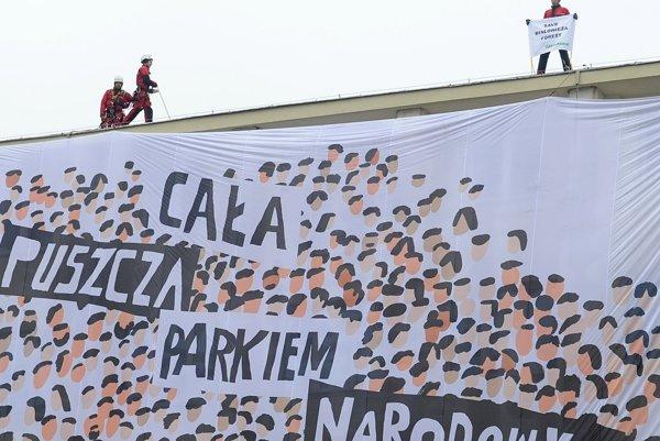 Aktivisti Greenpeace s transparentom, na ktorom je napísané: Celý prales (nech je) národným parkom.