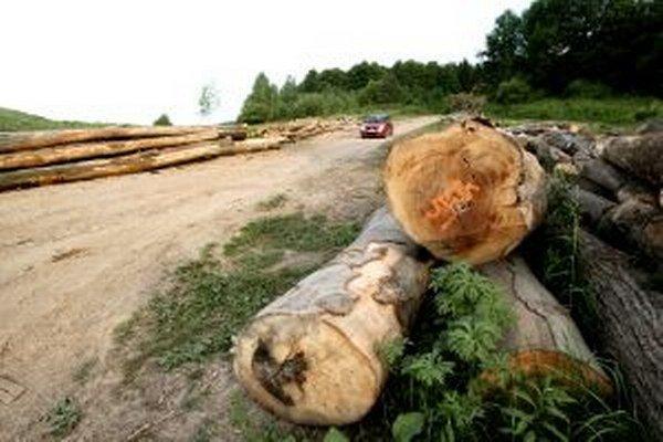 Malo by ísť o drevospracujúci priemysel.